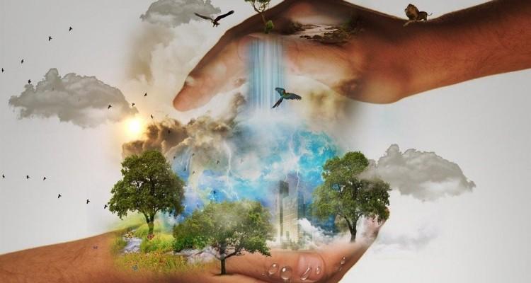 """Water To Food:  con un click si può scoprire quanta acqua """"consuma"""" ogni alimento"""