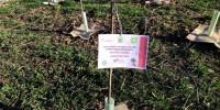 PEFC e Rete Clima piantano 100 nuovi alberi al Parco Nord di Milano