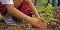 Earth Day, ricerca Facile.it: italiani più attenti al pianeta dopo la pandemia