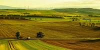 Recovery, Coldiretti: l'agricoltura italiana la più green d'Europa