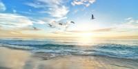 L'8 Giugno si celebra la Giornata Mondiale dell'oceano