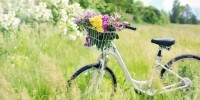 Xtribe, l'app che permette di comprare e noleggiare biciclette vicino casa