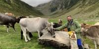 Con i Vitalpina Hotels Südtirol/Alto Adige alla scoperta di api, galline, capre e altri animali da fattoria