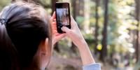 Scatta il bosco: su Instagram il concorso fotografico di PEFC per raccontare le foreste italiane