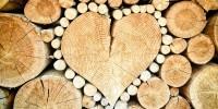 Nel 2020 risparmiate emissioni di CO2 per 1,9 milioni di tonnellate grazie al riciclo del legno