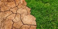Caldo: sos siccità, terra secca e frutta bruciata