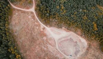 Greenpeace: deforestazione in Amazzonia aumenta del 17 per cento