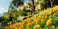 Un autunno ricco di appuntamenti per i Giardini di Castel Trauttmansdorff