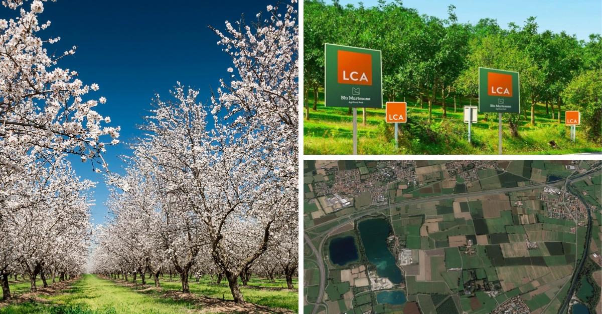 LCA Studio Legale crea un frutteto alle porte di Milano