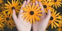 Alla Reggia di Venaria la prima rassegna italiana dedicata all'arte floreale e al giardino