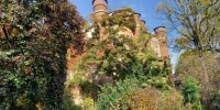 Autunno negli Orti botanici della Lombardia: ancora pochi giorni per visitarli