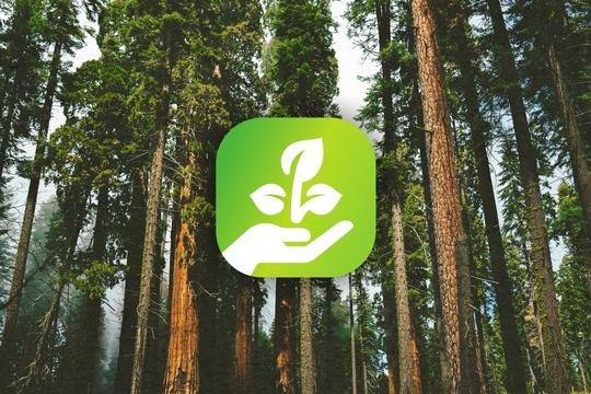 Juice Technology: sostiene un progetto di riforestazione in Spagna.