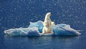 Indagine BEI sul clima: per 91% italiani i cambiamenti climatici si ripercuotano sulla loro vita quotidiana
